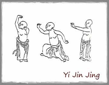Cours de Qi Gong à Médis et Vaux-sur-mer - Yin Tao